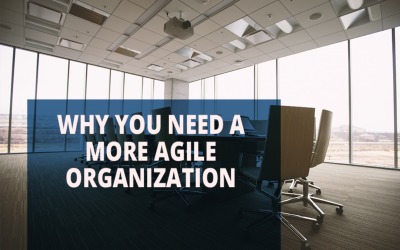 Why You Need a More Agile Organization